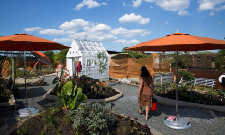 Swale, A Floating Farm, Returns To New York City Through The Fall