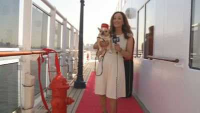 Dogs and Cats Get Royal Treatment On Board Upgraded Queen Mary 2